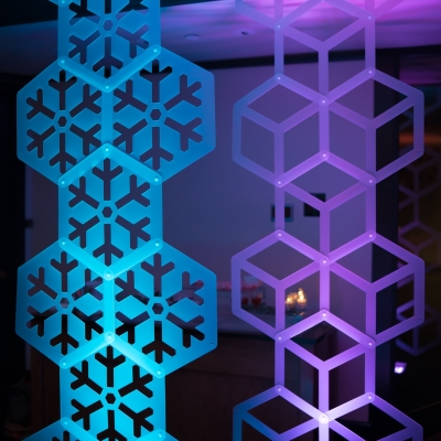 Custom SnapDrop backdrop by GreenLight Events